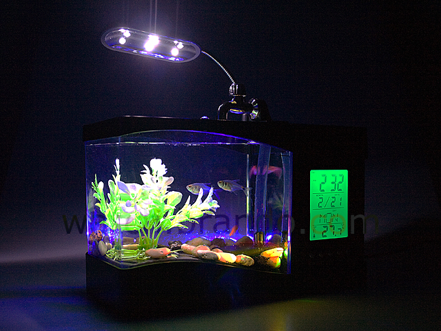 USB Aquarium with Alarm Clock and Thermometer